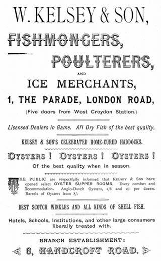 "A black-and-white advertisement reading: ""W Kelsey & Son, Fishmongers, Poulterers, and Ice Merchants, 1, The Parade, London Road, (Five doors from West Croydon Station.) Licensed dealers in Game. All Dry Fish of the best quality. Kelsey & Son's celebrated home-cured haddocks. Oysters! Oysters! Oysters! Of the best quality when in season. The public are respectfully informed that Kelsey & Son have opened select OYSTER SUPPER ROOMS. Every comfort and accommodation. Anglo-Dutch Oysters, 1/6 and 2/- per dozen. Barrels of Oysters from 8/-""."