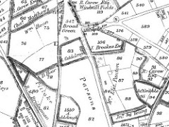 "A black and white hand-drawn map showing numbered plots of land, some of which are also annotated with names of people and places including ""A. Caldcleugh"", ""Mrs Eliz. Panton"", ""R. Carew Esq."", ""Broad Green"" and ""Pitlake""."